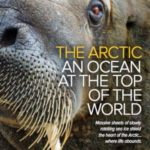 NATIONAL GEOGRAPHIC LINDBLAD EXPEDITIONS THE ARCTIC 2017-18 (BROCHURE)