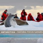 HOW TO SELL THE COOLEST PLACE ON EARTH – ANTARCTICA