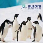 AURORA EXPEDITIONS ANTARCTICA & SOUTH GEORGIA 2018-19 (BROCHURE)