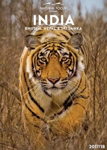 Natural Focus Safaris India 2017-18