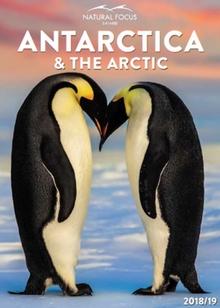 Natural Focus Safaris Antarctica & the Arctic 2018-19
